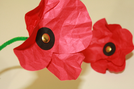 Make a paper poppy flower vatozozdevelopment make mightylinksfo