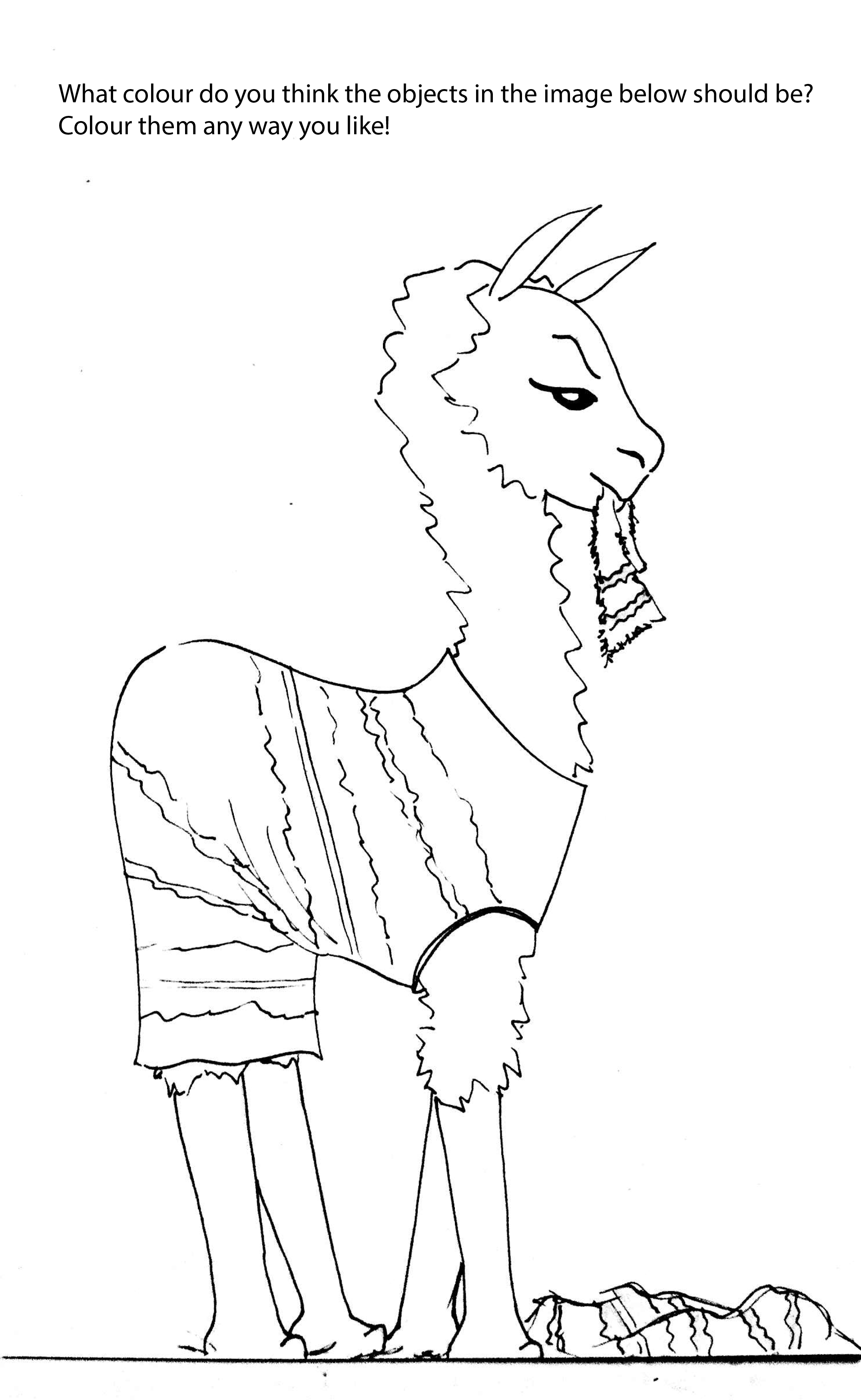 What Colour Is This Llama